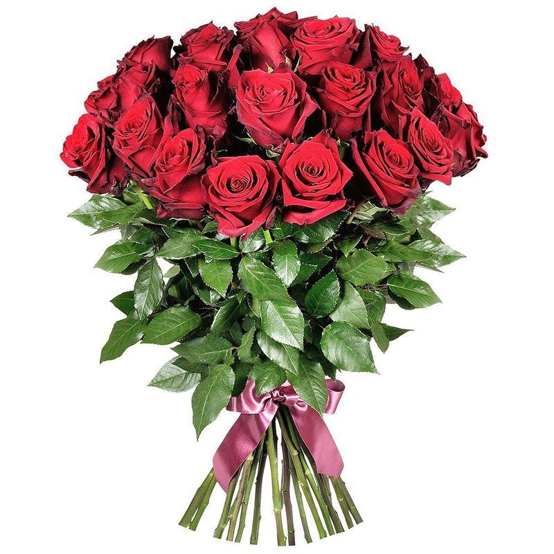 25 бархатных роз